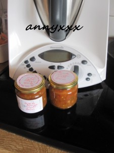 Thermomix Paprika Orangen Apfel Relish  (1)