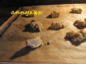Thermomix Haferflocken Kekse (1)