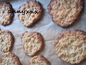 Thermomix Haferflocken Kekse (2)