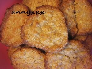 Thermomix Haferflocken Kekse (3)