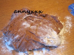 Cantucci Thermomix (1)