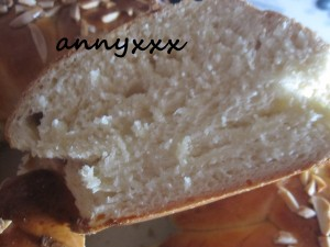 Thermomix Oster Zopf  (4)
