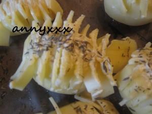 Fächer Kartoffeln  (1)